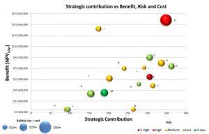 Portfolio-Review-Strategic-Contribution-2
